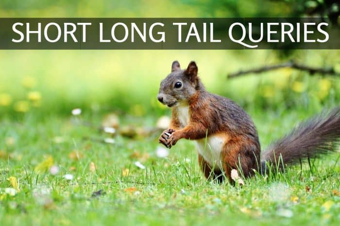 short long tail queries