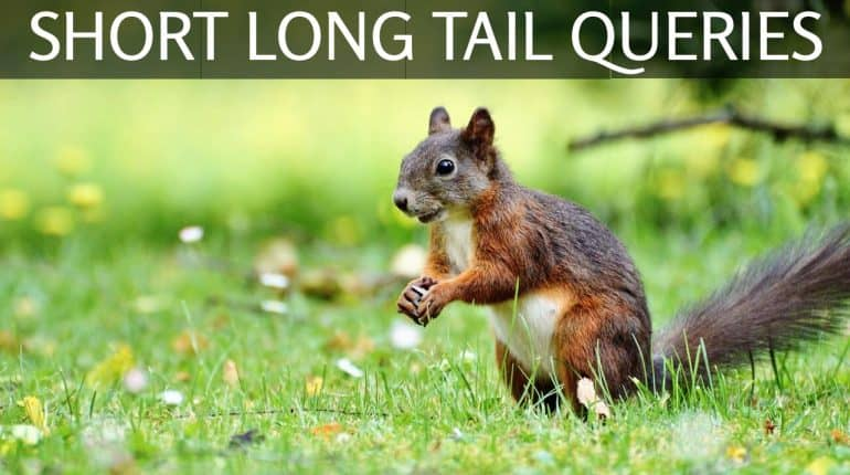 short long tail queries